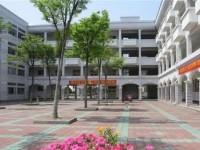 郑州商贸旅游铁路职业学院历年录取分数线