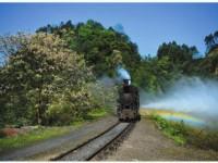 云南2020年就业好的铁路学校