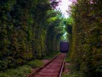 云南2020年有成人铁路学校吗