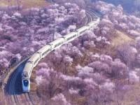 云南2020年铁路学校就业前景怎么样