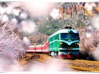 云南2020年春季招生的铁路学校